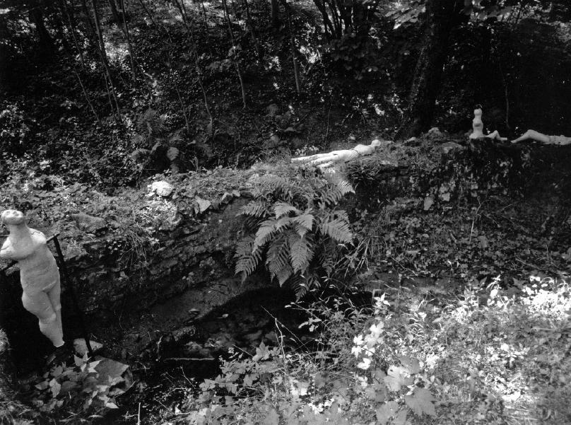"Philippe Kandel, ""Jardins du Pin"", 2011."