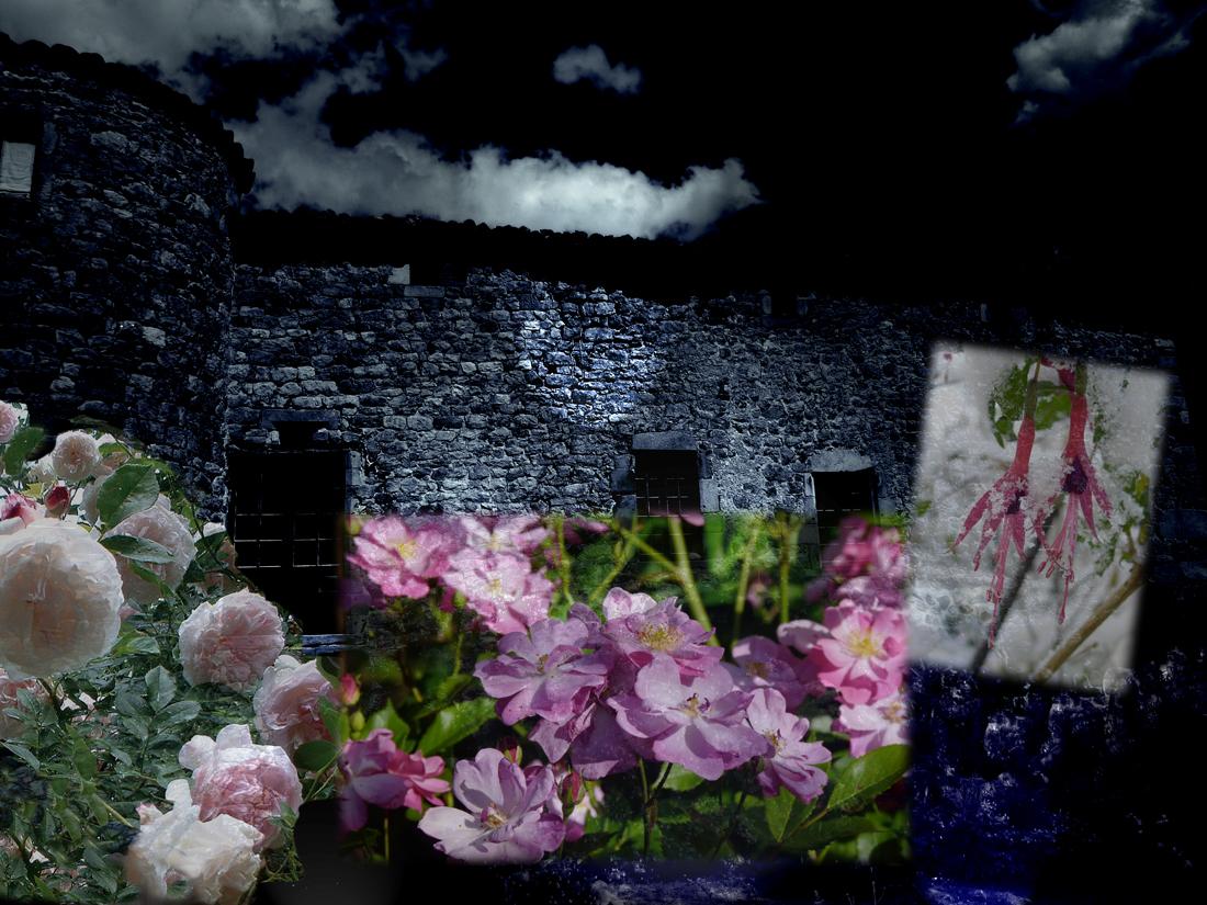 """Collectif, """"La Nuit des jardins du Pin"""", création audiovisuelle, 2012."""